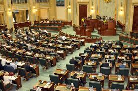 senat plen camere
