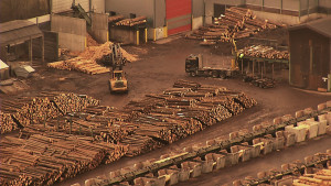poza-fabrica-lemn-sebes