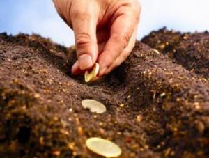 investitii-profitabile-300x227