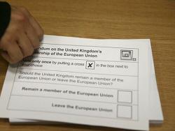 brexit buletin