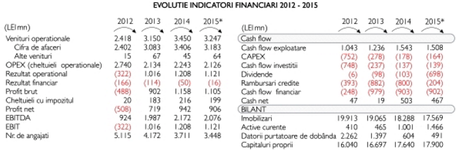 indicatori financiari hidroelectrica