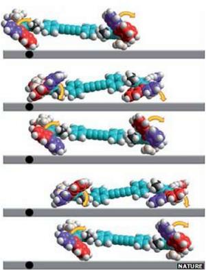 masina-moleculara